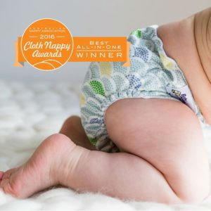 Baby BeeHinds - Best All-In-One Nappy